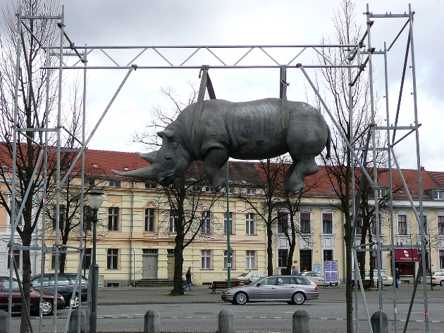 Hanging Rhino of Potsdam